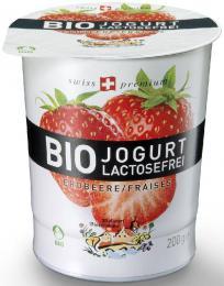 yahourt-bio-sans-lactose