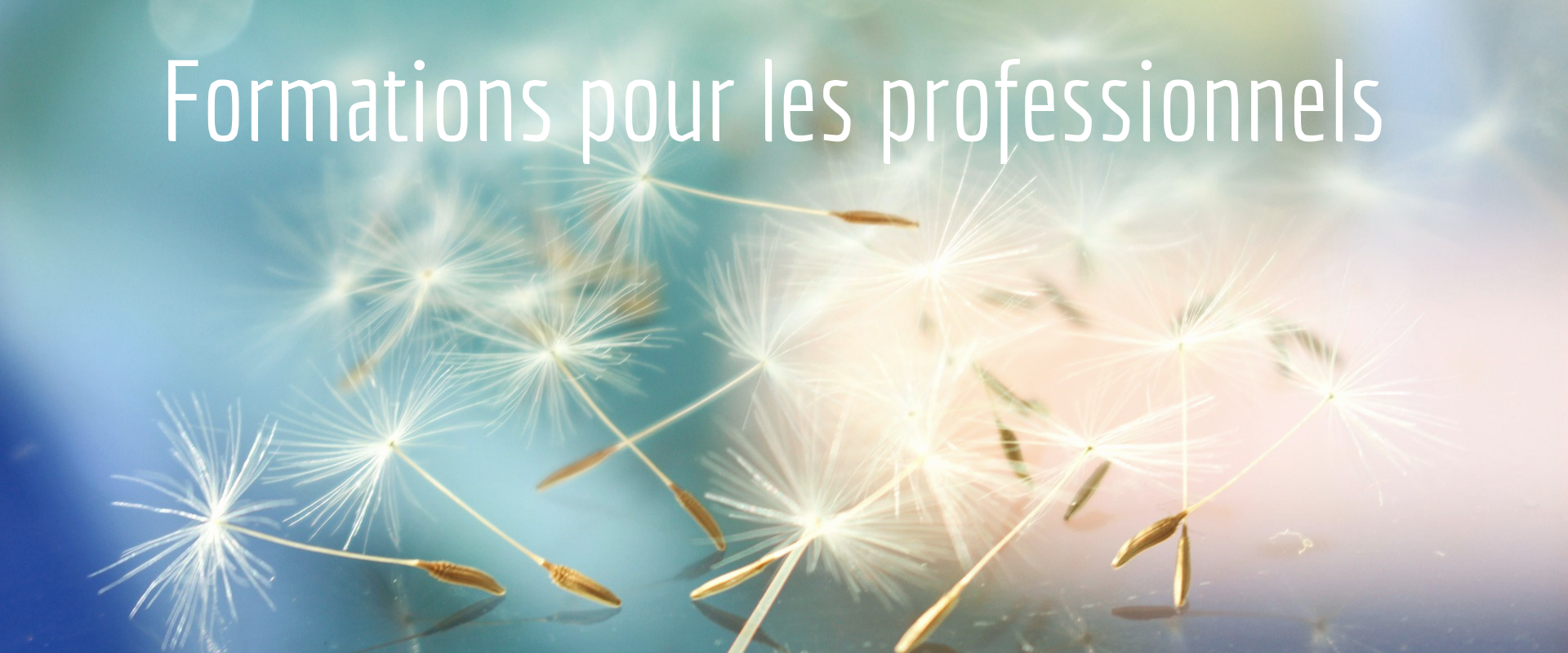 https://www.alimentation-integrative.fr/wp-content/uploads/2019/07/Formation-slider.png