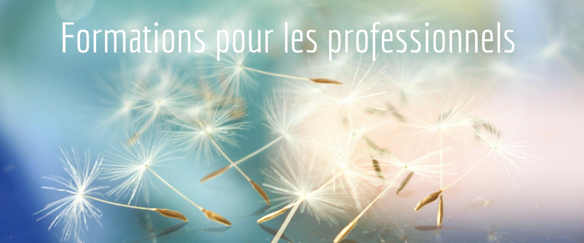 https://www.alimentation-integrative.fr/wp-content/uploads/2019/07/Formation-slider.png