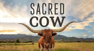 Sacred Cow - le film