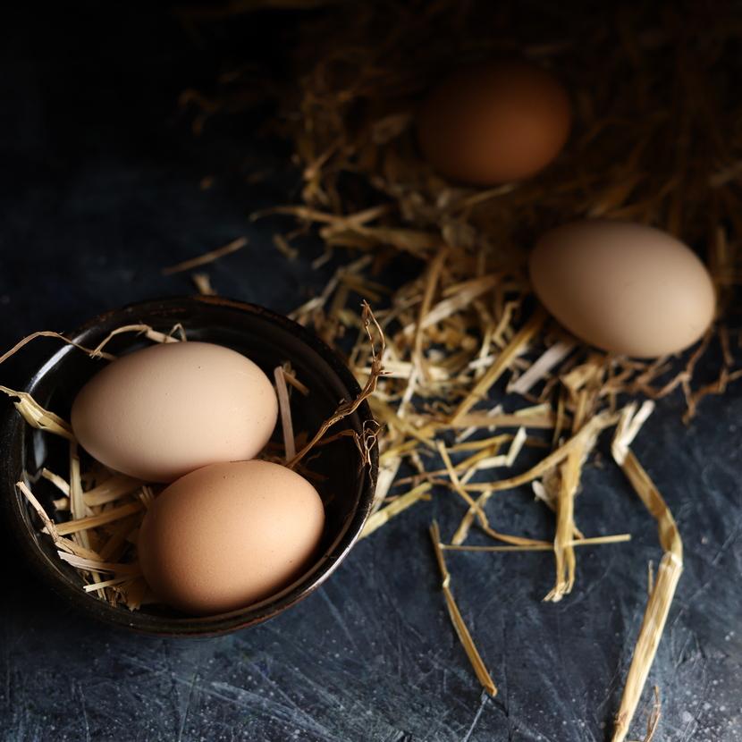 Mangez-vous suffisamment de protéines ?